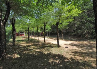 camping-lecina (14)
