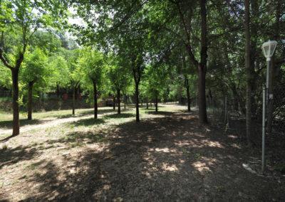 camping-lecina (16)